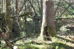 Waldspiel_16042016 (101)