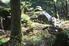 Waldspiel_16042016 (108)