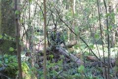 Waldspiel_16042016 (109)