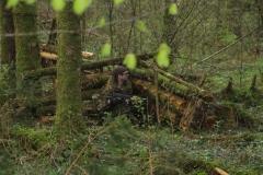 Waldspiel_16042016 (169)