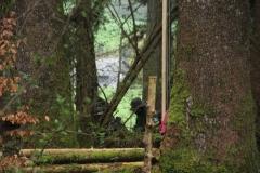 Waldspiel_16042016 (173)