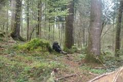 Waldspiel_16042016 (176)