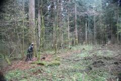 Waldspiel_16042016 (184)