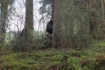 Waldspiel_16042016 (19)