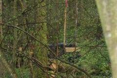 Waldspiel_16042016 (191)