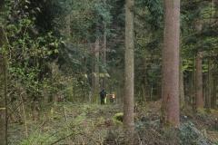 Waldspiel_16042016 (209)