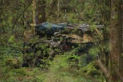 Waldspiel_16042016 (210)