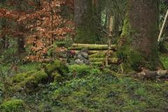 Waldspiel_16042016 (212)