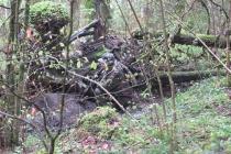 Waldspiel_16042016 (34)