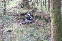Waldspiel_16042016 (35)