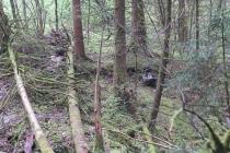 Waldspiel_16042016 (42)