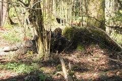 Waldspiel_16042016 (89)