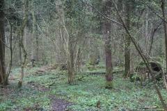 Waldspiel_16042016 (163)