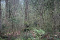 Waldspiel_16042016 (187)