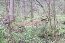 Waldspiel_16042016 (21)